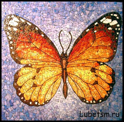 Бабочка на синем